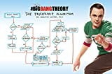 The Big Bang Theory Friendship Algorithm Maxi Poster