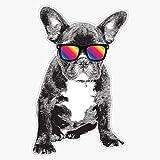 EMC Graphics Cool French Bulldog Rainbow Sunglasses Pride Vinyl Waterproof Sticker Decal Car Laptop Wall Window Bumper Sticker 5