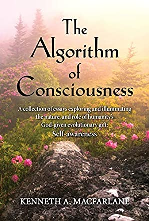 The Algorithm of Consciousness