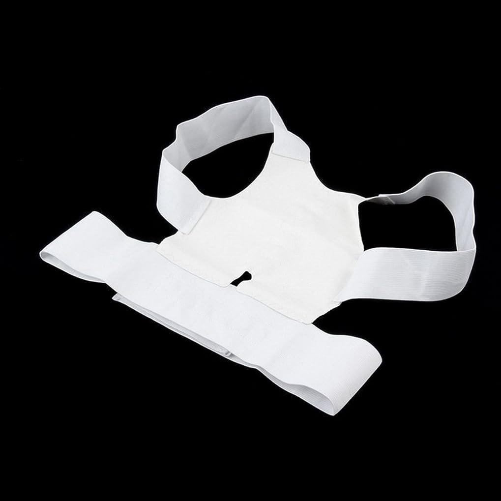 モネとしてミス白快適磁気姿勢サポートコレクター腰痛ベルトブレース肩の痛みから病気 - 白