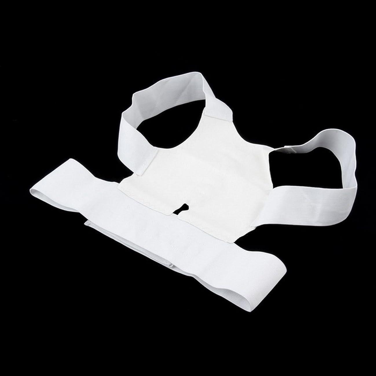 司書締め切り恵み白快適磁気姿勢サポートコレクター腰痛ベルトブレース肩の痛みから病気 - 白