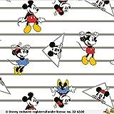 Jersey Stoffe Disney Micky Maus Weiss 0,50m x VB
