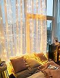 Lichtervorhang Fenster außen Garten Party - 3X3M 300 LEDs warmweiß, 4 Musikmodi und 8 Beleuchtungsmodi mit Fernbedienung, USB Lichterkettenvorhang mit Timer als Deko