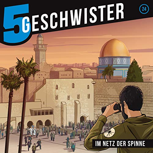 Im Netz der Spinne audiobook cover art