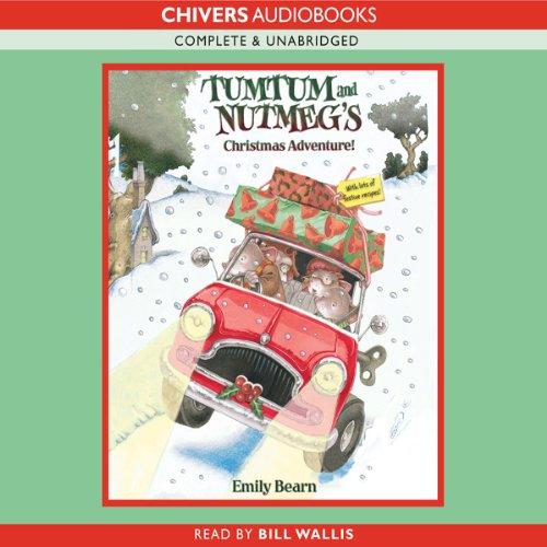 Tumtum and Nutmeg: A Christmas Adventure