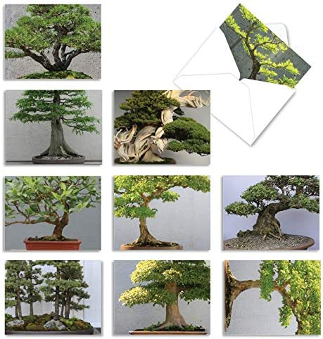 10 Assorted 'Tiny Trees' Thank You Cards...