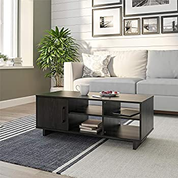 Ameriwood Home Southlander Coffee Table