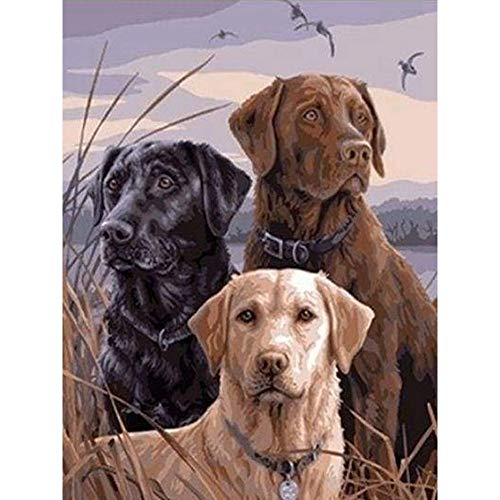 Hi Stone Diamond Painting Full Drill Square 5D DIY Rhinestone Gems Embroidery Arts Craft Adults Childrens Paint-by-Number Kits Cross Stitch for Home Wall Decor, Animal Three Dog -16x12 Inch
