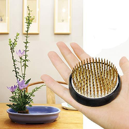 Blumen-Frosch rund Halter Pin Frosch für Blumengesteck (6,1 cm)