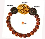 REBUY® Nepali Rudraksha Beads Bracelet 2 4 4 Mukhi for Men and Women