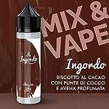 NEBULA AROMA CONCENTRATO Mix & V. 20 ml MADE IN ITALY - 2019 (Ingordo)