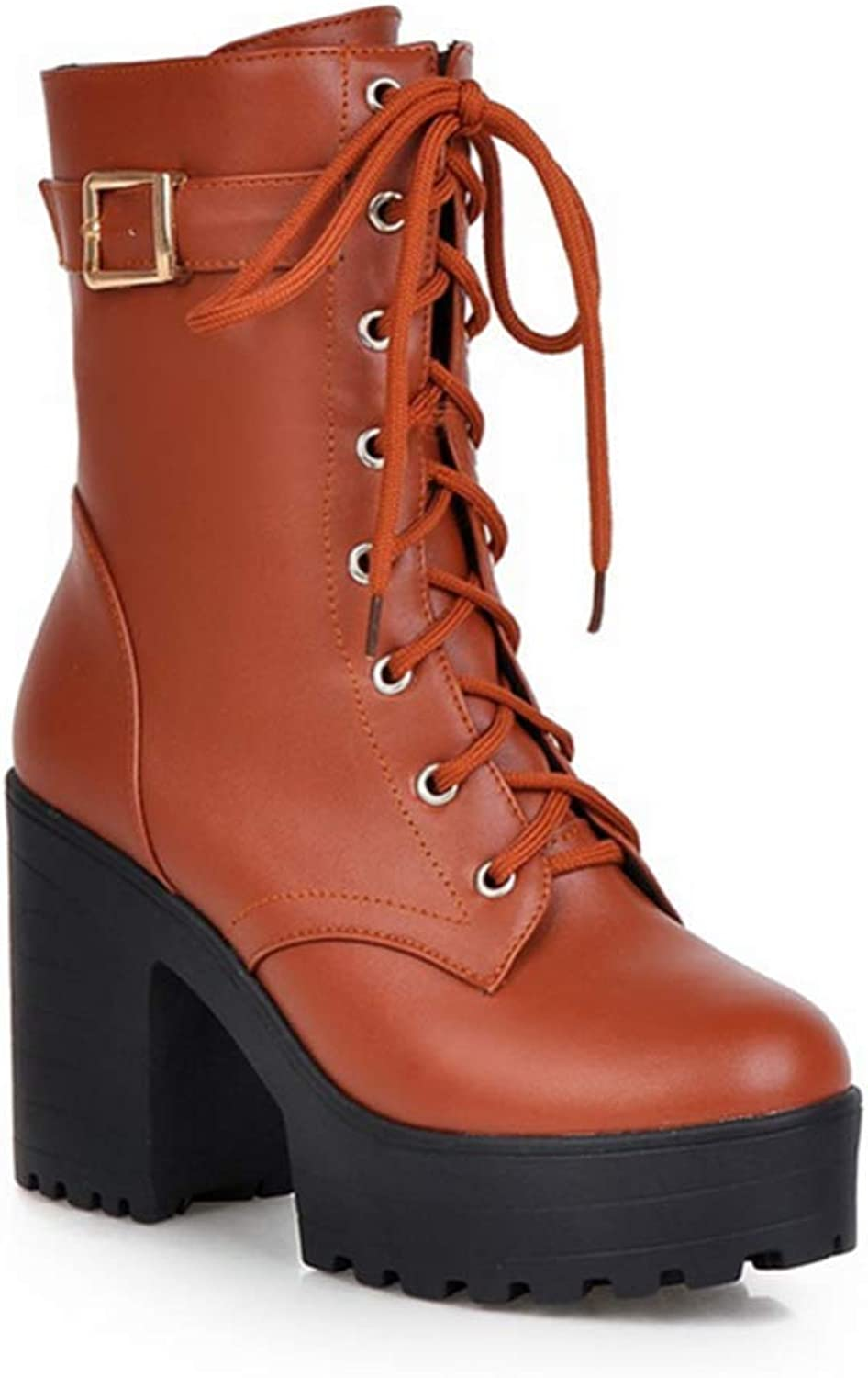 Shiney Women's Martin Boots Front Strap Chunky Heel Buckle Female Boots Fall Winter