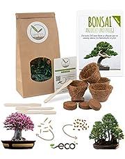 Bonsai Starter Kit vermeerderingsset incl. GRATIS eBook - plantenset van kokosnootpotten, zaden & grond - duurzaam cadeau-idee voor plantenliefhebbers