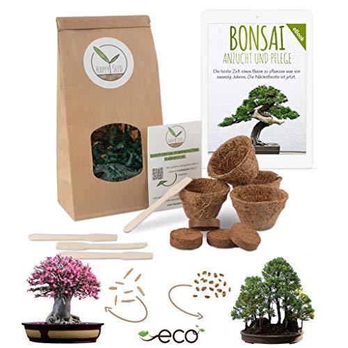 Bonsai Starter Kit Anzuchtset inkl. GRATIS eBook - Pflanzset aus Kokostöpfen, Samen & Erde - nachhaltige Geschenkidee für Pflanzenfreunde (Würstenrose + Berg Mammutbaum)