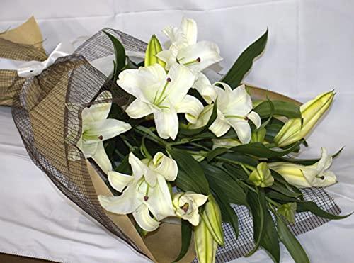 PURIZA【生花花束】ゆり 最高級カサブランカ「百合の女王」「祝福」 (50輪の花束)