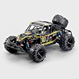 DBXMFZW RTR, Control Remoto, 1/10 Scale Off-Road RC Car, Vehículo RC de 40 km/h...