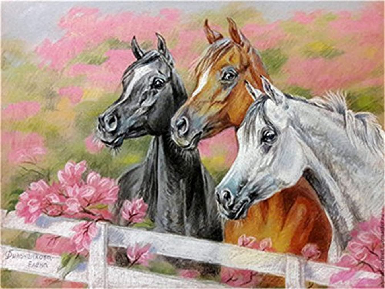 Paint by Numbers Kits DIY Oil Painting Home Decor Wall Value Gift - Three Horses 16X20 Inch (Frame)