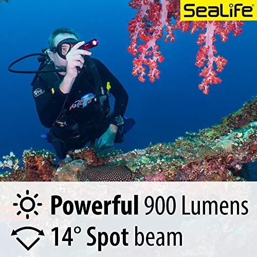 SEALIFE Sea Dragon Mini 900S Power Kit with SD Mini 900 Light, Lanyard with BC Clip, 2600mAh Battery & Charger (SLKITO6)