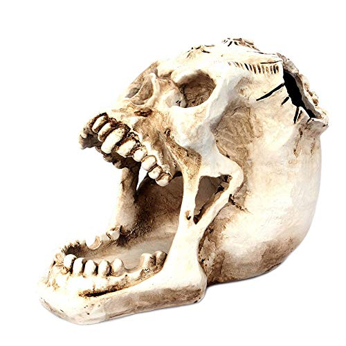 FABSELLER Creative Tip Tooth Horror Face Skull Storage Pen Holder Desktop Home Decoration Ornaments
