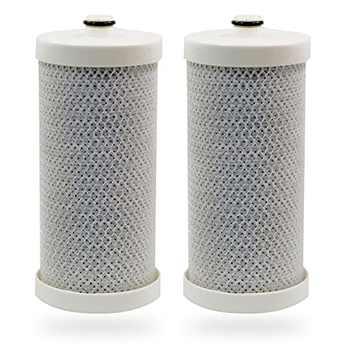 Swift Green Filters SGF-WFCB Replacement water filter for WFCB,WF1CB, 240394501, NGRG-2000, RF-100, RG-100, 218710901, 218710902 ,469910 (2 Pack)