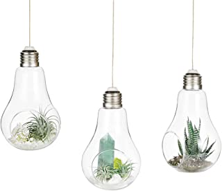 Mkono 3 Pack Light Bulb Terrariums with Strings Hanging Glass Vase Indoor Air Plant Holder Home Decor for Airplants, Succulent, or Small Plants
