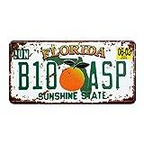 Eureya Florida B10 ASP Auto Nummernschild Auto Tag