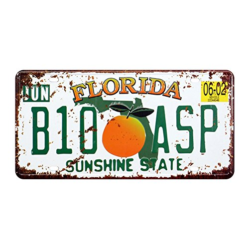 Eureya Floride B10 ASP automatique de voiture de plaque d'immatriculation Tag Home/CAFE Bar/Pub/restaurant/salon Décoration murale vintage plaque 6\