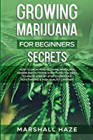 Growing Marijuana for Beginners - Secrets: How to Grow MIND-BLOWING Marijuana Indoor and Outdoor, EVERYTHING You Need to Know, Step-by-Step, to Produce Outstanding & High-Quality Cannabis