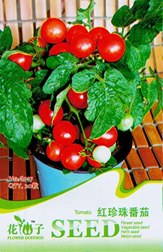 AGROBITS Paquet original 20 rouge tous TomatoCherry tomate bio C017