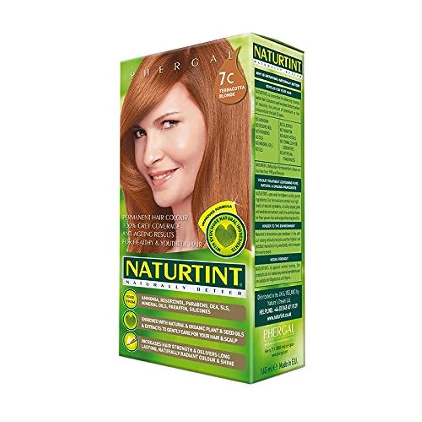 疾患人気ラフNaturtint Hair Colour 7C Terracotta Blonde (Pack of 2) - Naturtint髪の色7Cはテラコッタのブロンド (x2) [並行輸入品]