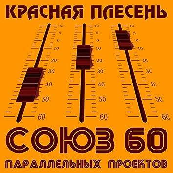 Союз параллельных проектов 60