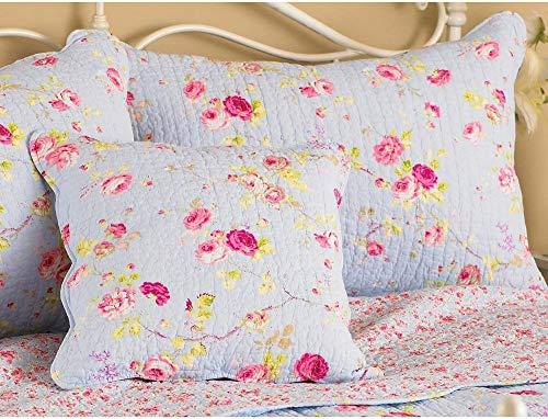 Riva Paoletti Honeypotlane Bleu Pillow Shams, Singles, Coton