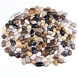 skullis 5 Pounds River Rocks, Pebbles, Garden Outdoor Decorative...