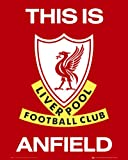 empireposter Fussball - Liverpool - Club Logo Sport Fußball Mini Poster Plakat Druck - Grösse 40x50 cm