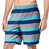 Speedo Mens Hydro Volley Swim Shorts (Capri Breaze, Large 34/36)