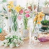 Miuezuth Wasserperlen Mix Wasserkugeln Aquaperlen Orbeez Aqualinos, Wassergel-Kugeln Deko für Hochzeit Party, Tisch Dekoration Gelperlen für Blumen Pflanzen und Vasen Wiederverwendbar, DIY Geschenk - 4