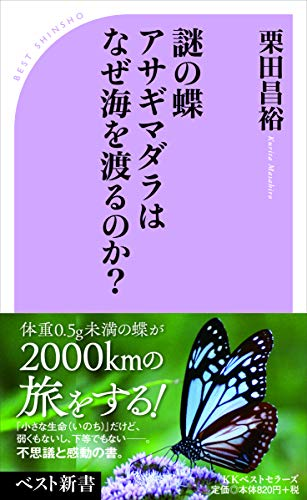 謎の蝶 アサギマダラはなぜ海を渡るのか? (ベスト新書)