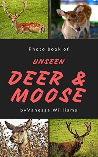Photo Book of Unseen Deer & Moose: Photo book Ebook Educational book for children learning with fun and relaxation (photo book animal 1) (English Edition)