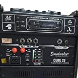 Portable Rechargeable PA Amplifier Cube-28 With Speaker & Digital Media Player