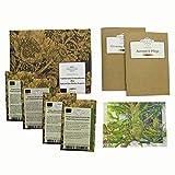 Piante tradizionali tintorie (Bio) - Set regalo di semi con 4 antiche piante selvatiche pe...