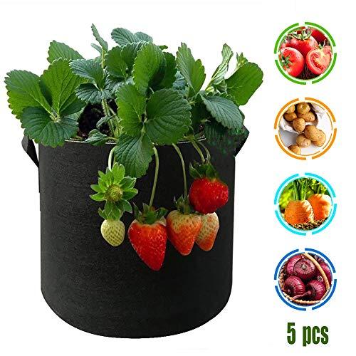 WENCY Plantenzak van vlies, ademend, met handvatten, voor groenten, peper, aardappelen, tomaten (zwart), 10 gallons