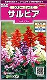 サカタのタネ 実咲花5215 サルビア シズラーミックス 00905215