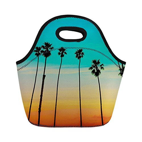 Coloranimal réutilisable en néoprène Sac à lunch Tote Tropical de noix de coco Arbre Motif sac à main, femme, tropical tree-4