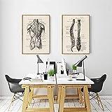 DFRES Obra de Arte de anatomía Humana Imagen de Pared médica Esqueleto Muscular Póster Vintage Impresión de Lienzo nórdico Pintura educativa Decoración Moderna 50x70cmx2 Sin Marco