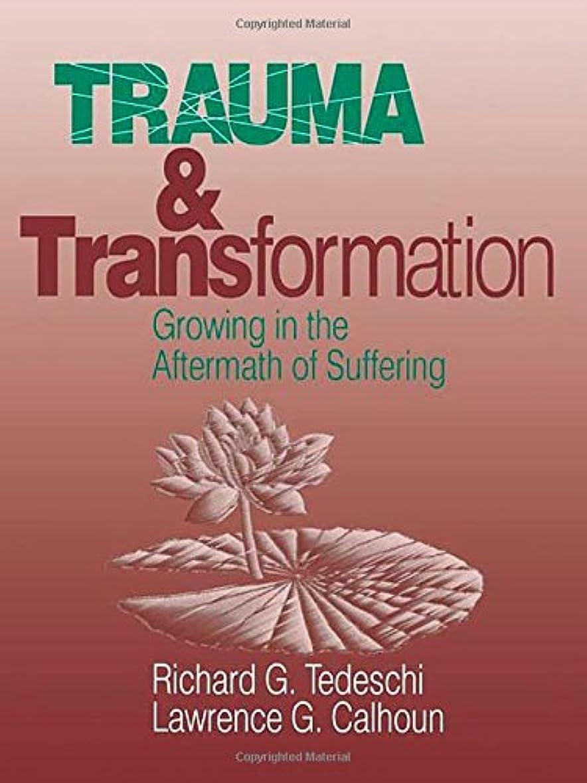 研究バリケード先のことを考えるTrauma and Transformation