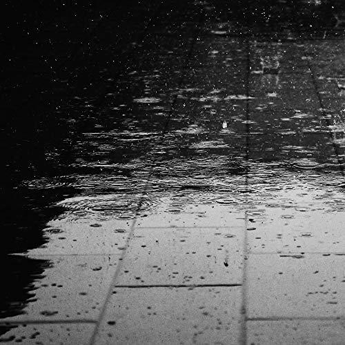 20 Sonidos Alegres En Bucle De Lluvia Suave.