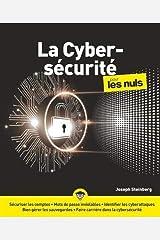 La Cybersécurité pour les Nuls, grand format Paperback