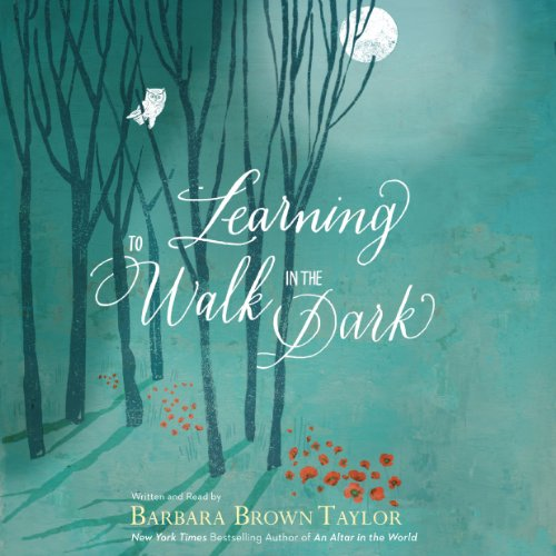 Couverture de Learning to Walk in the Dark