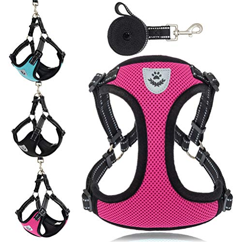 EXPAWLORER Small Dog Harness and Leash - Adjustable Reflective No Pull Vest Harness for Dogs, Comfort Padded Step in Puupy Harness, Soft Mesh Pet Harness for Walking - Small Medium Dogs