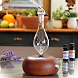 Aromatherapy Diffuser - Professional Grade - Wood and Glass (Orbis Nox...